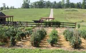 Garden Resource Page