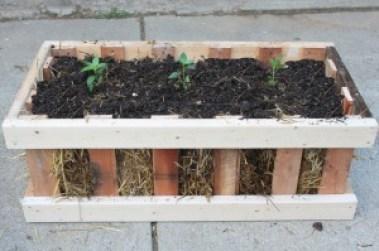 Straw Bale Crate Garden