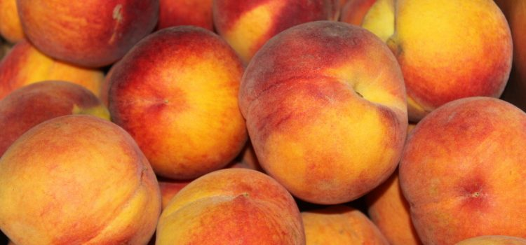 Peach Preserves – How to Can Peaches and Make Summer Last All Year Long