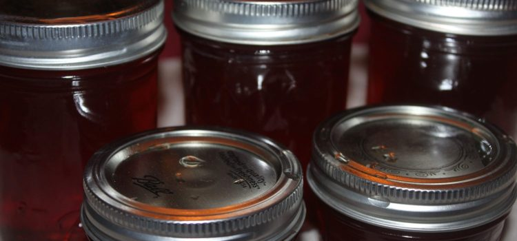 Apple Cinnamon Honey Jelly Recipe – 3 Ingredients, Spectacular Fall Taste!