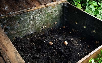 Composting 101  –  Tips To Make Easy Compost