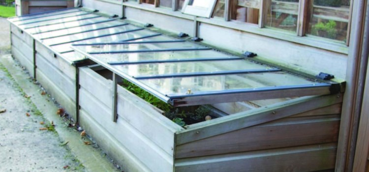 Growing Fresh Produce In The Winter With A Cold Frame Greenhouse