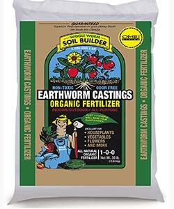 fertilize tomato plants