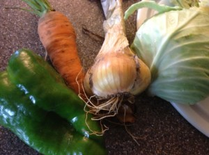 Fresh veggies picked from the garden and ready to be made into coleslaw.