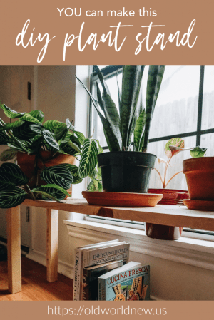 ridiculously easy DIY plant stand