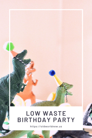 low waste birthday party experience