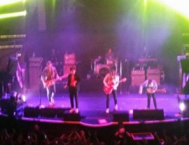Cage the elephant Manchester albert hall