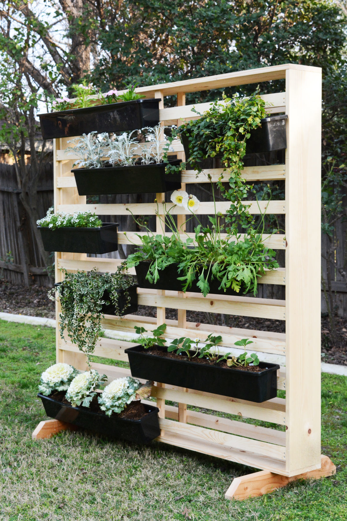 DIY Living Wall with Moveable Planters - Oleander + Palm on Garden And Outdoor Living  id=85868