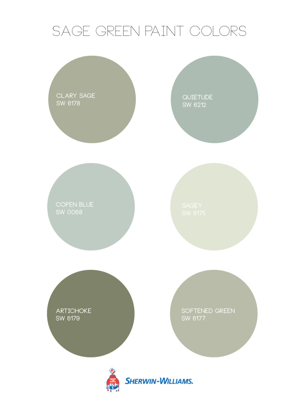 Sage green walls oleander palm - What colors go with sage ...