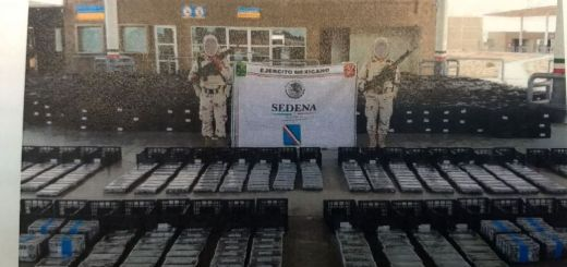 Aseguran 803 paquetes con cocaína que iba en cajas de aguacate