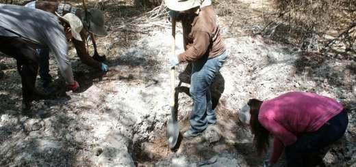 Localizan rastreadoras dos cuerpos en fosas clandestinas en Los Mochis