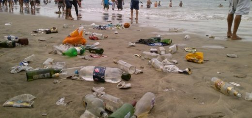 Cerca de 70 toneladas de basura recogieron en playas de Mazatán
