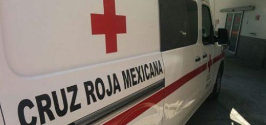 Joven de 19 años muere en una volcadura en Sanalona