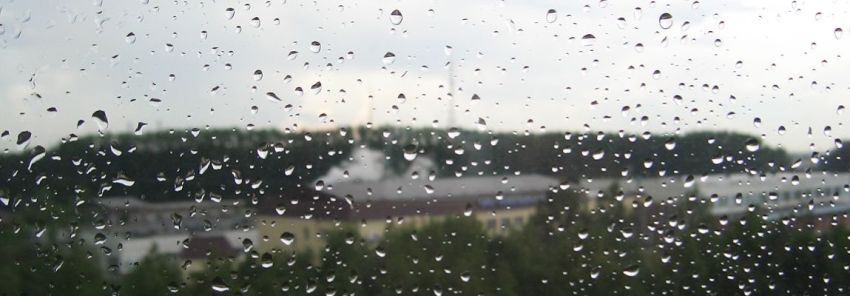 Капли дождя на стекле, Олег Чувакин, рассказ Страусовая политика