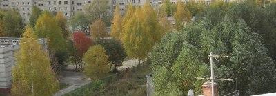 Город, вид с балкона, Олег Чувакин, роман Мёртвый хватает живого