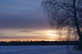 Закат зимой на фоне дерева, фото