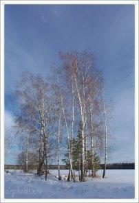 Небо, снег, солнце, фото, Олег Чувакин, 05