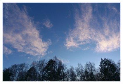 Небо, снег, солнце, фото, Олег Чувакин, 15