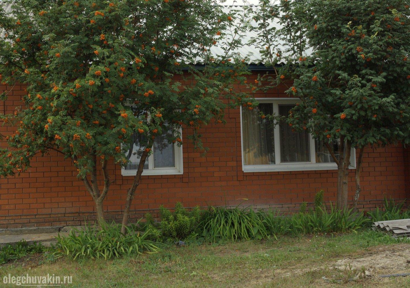 Дом, Олег Чувакин, писатель, 2012 и 2013 годы, Пономарёво, Заводоуковский район