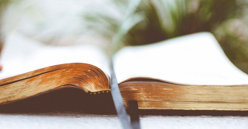 Рукопись, книга, писатель, перо, чернильница, иллюстрация