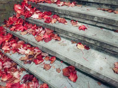 Осень, сентябрь, лестница, ступени, уровень, путь, листья, красные