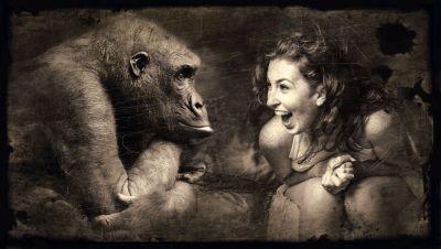 Уровень обезьяны, глупость авторов СМИ, журналисты, ошибки, ляпы, курьёзы