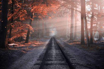 Выбора нет, путь, дорога, смысл жизни, счастье