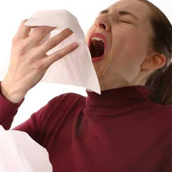 При чихании все функции организма останавливаются, даже сердце. и еще 12 интересных фактов