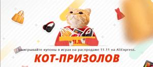 1111-kot-Aliexpress