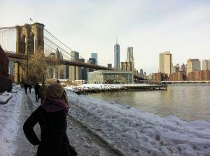 Febrero en Nueva York, 2014