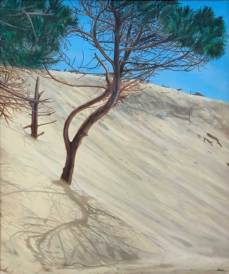 Dune covering the Pine Tree