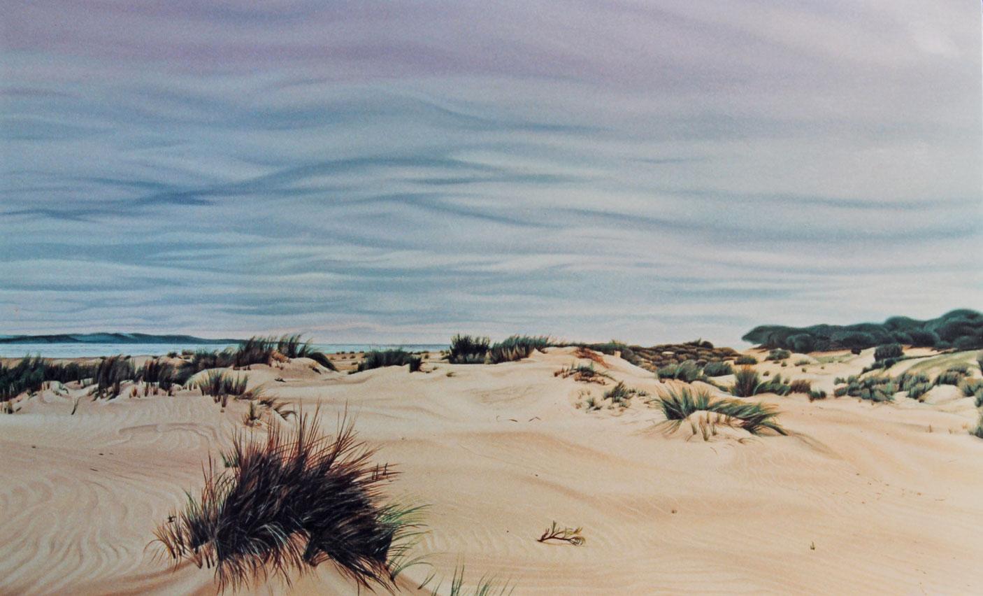 Winter Sand Dunes in Coto Doñana