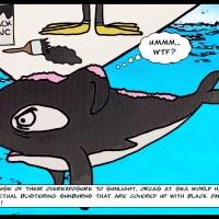 Vegan Fact of the Day! Sea World Sucks!