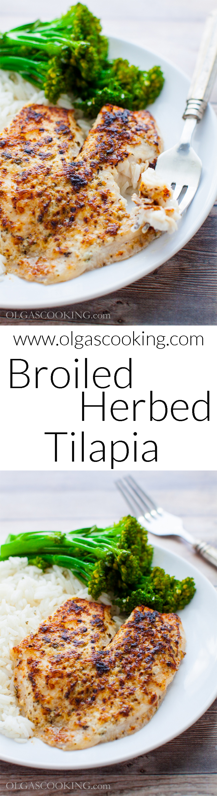 Best ever, easy and delicious! Broiled Herbed Tilapia. Fancy dish made with little effort!