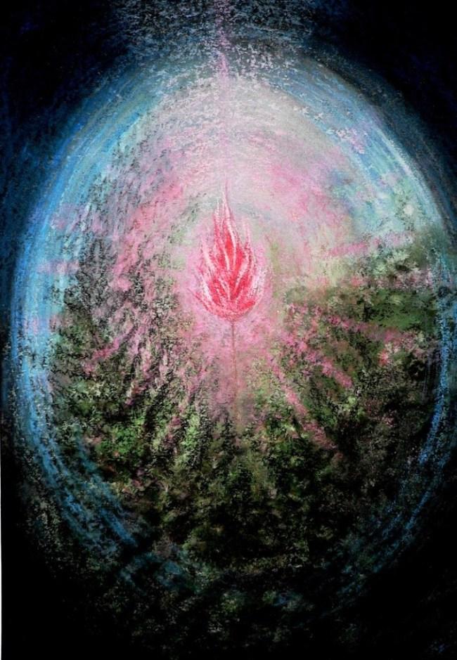 27. Цветок папоротника