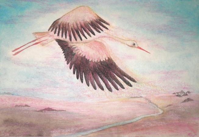 28. Птица искала край неба