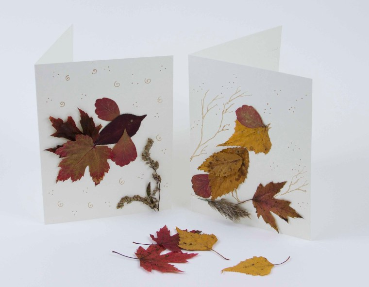 nature cards