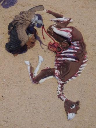 Real desert life