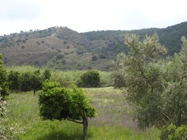 Lush valleys, dry hills