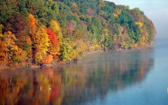 Fearful Future of Fall