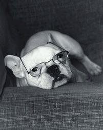 asa-occhiali