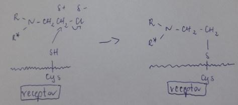 alkilowanie 2