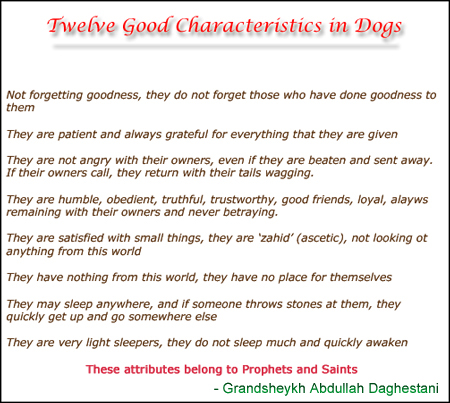 The Qualities of Dogs