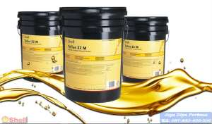 Dealer Oli Shell Argina Oil S 40