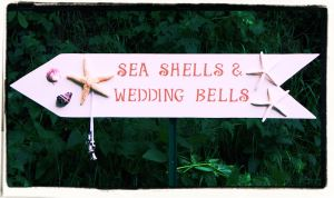 Sea Shells and Wedding Bells