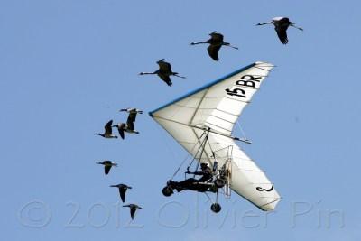 Avions28
