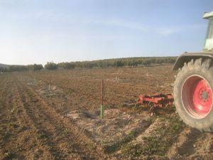El tractor con el apero que se usa para esta labor.