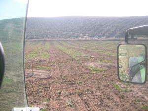 Vista desde el lateral del tractor.