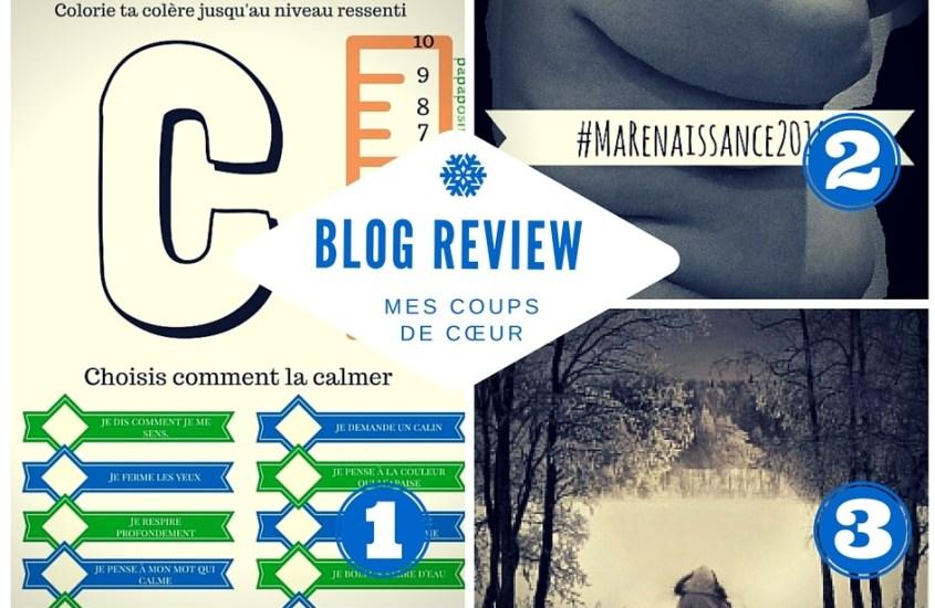 Blog review #55 : colère, combat et froid !