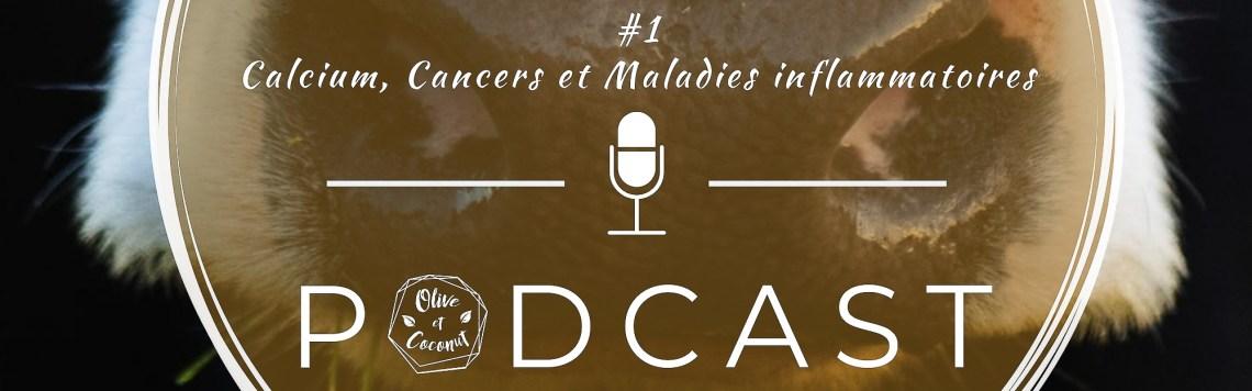 Podcast Santé Produits Laitiers